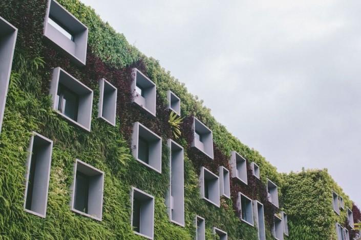 Budynek z roślinami - Zielony Ład a budownictwo modułowe